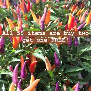 All five dollar items are buy two get one free!